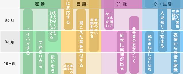 8か月~10か月までの発達表